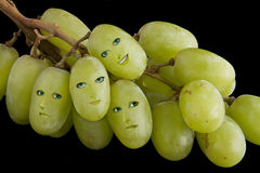 Grape faces Stock Photography