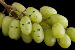 Grape faces Stock Photography