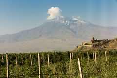 Grape field in Ararat valley. View of Khor Virap and Mount Arara. View of the Khor Virap monastery and Mount Ararat. In the foreground grape plantations Stock Photos