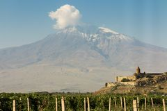Grape field in Ararat valley. View of Khor Virap and Mount Arara. View of the Khor Virap monastery and Mount Ararat. In the foreground grape plantations Stock Image