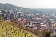 Grape fields above Heppenheim medieval town. Germany stock image