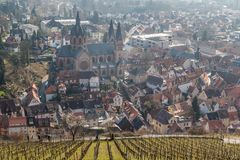 Grape fields above Heppenheim medieval town. Germany royalty free stock image