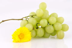 Grape and flower Stock Photo