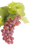 Grape food over white Royalty Free Stock Photography
