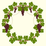 Grape frame. A elegant frame in floral style Royalty Free Stock Images