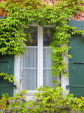 Grape framed window. With green window shutters Stock Photo