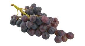 Grape fruit Stock Photos
