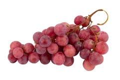 Grape fruit Royalty Free Stock Photos