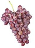 Grape fruit Royalty Free Stock Photo