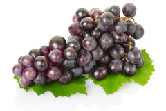 Grape fruit Royalty Free Stock Images
