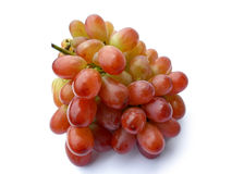 Grape fruit Stock Images