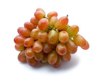 Grape fruit Royalty Free Stock Image