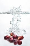 Grape Fruit Splash on water Stock Image