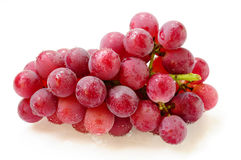 Grape fruits Stock Images