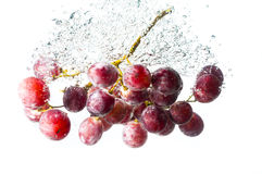 Grape fruits fall deeply under water Stock Photography