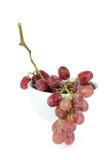 Grape fruits Stock Photos