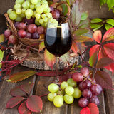 Grape and glass of  wine. Wine in glass with grape  on wooden background Royalty Free Stock Photo