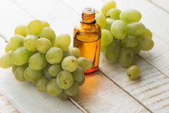 Grape and grape seed oil Stock Images