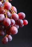 Grape grapes Stock Photo