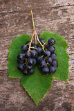 Grape With Green Leaf Royalty Free Stock Photography