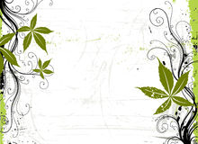 Grape. Grunge background. Stock Photo