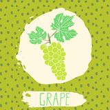 Grape hand drawn sketched fruit with leaf on background with dots pattern. Doodle vector grape for logo, label, brand identity Stock Photos