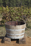 The Grape Harvest. Traditional wood vat used in the grape harvest Royalty Free Stock Photography