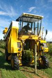 Grape Harvester stock image