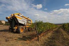 Grape harvesting machine Stock Photos