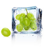 Grape in ice isolated on the white background Royalty Free Stock Images