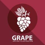 Grape icon design Stock Photos