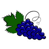 Grape icon Stock Image