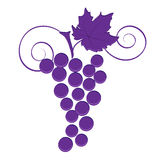 Grape icon Stock Photo