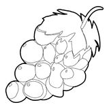 Grape icon, outline style Stock Photography