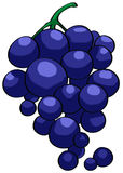 Grape illustration Stock Images