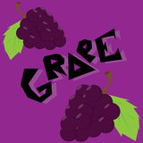 Grape illustration Wallpaper. Grape cartoon wallpaper  illustration icons Royalty Free Stock Photos