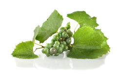 Grape isolated Stock Photo