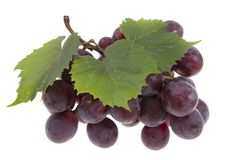 Grape  isolated Royalty Free Stock Image