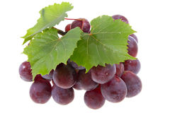 Grape on isolated. Red grape isolated on white Stock Photos