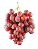 Grape isolated background Royalty Free Stock Photography