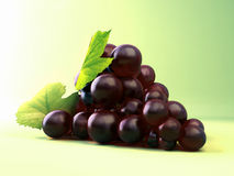 Grape isolated over green Royalty Free Stock Image