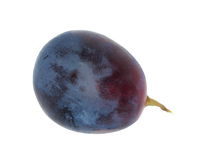 Grape isolated on white background Stock Images