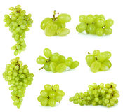Grape isolated on a white background Royalty Free Stock Photos