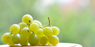 Grape closeup Stock Photos