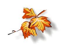 Grape leaf. Vector grape leaf in autumn royalty free illustration