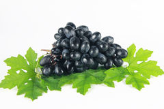 Grape with leaf Stock Photos