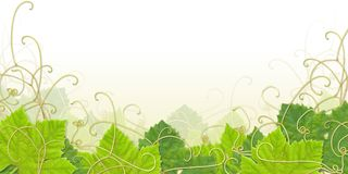 Grape leaf footer Stock Photos