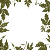 Grape leaf frame Royalty Free Stock Photo