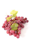 Grape with leaf Royalty Free Stock Images