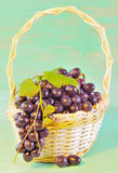 Grape and leaves in basket on wooden table Royalty Free Stock Photo